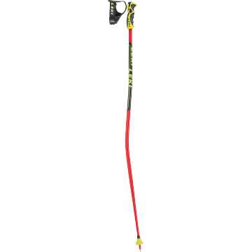 Leki WC Race GS